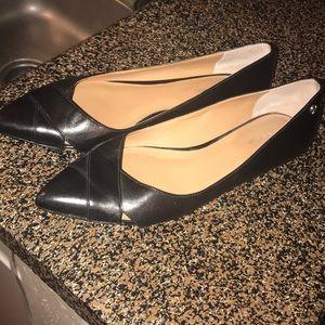 Calvin Klein pointed toe flats.